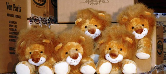 The Story of Duffy the Courage Lion